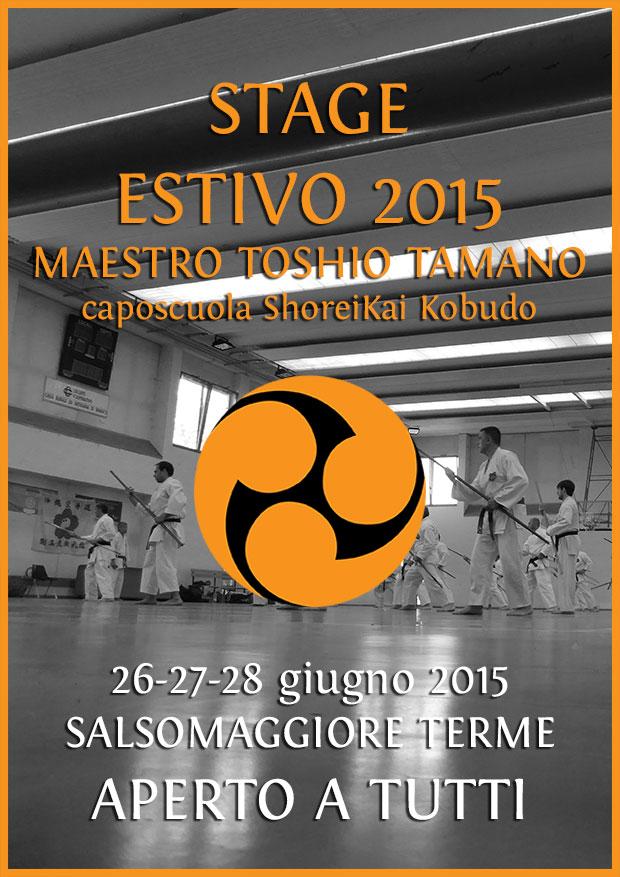 stage estivo kobudo 2015